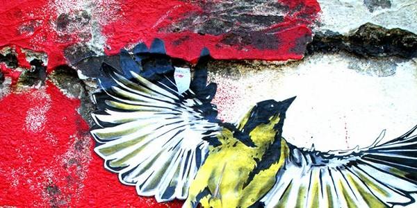 bird artwork by Gabriel Spector