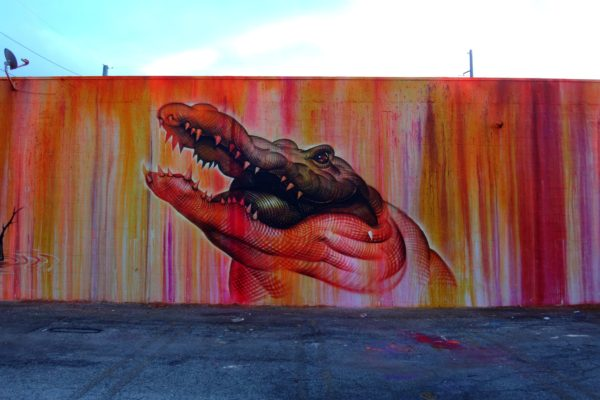 graffiti of a crocodile